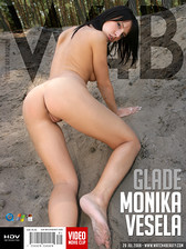 Monika Vesela - Glade